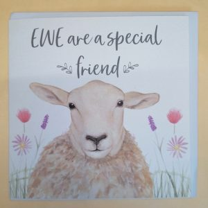 EWE are a special friend Greeting Card